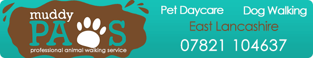 Advertising banner for Muddy Paws Dog Walking  and Pet Care in Rossendale